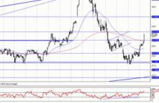 Акции «Сургутнефтегаз» — стоимость и дивиденды на сегодня